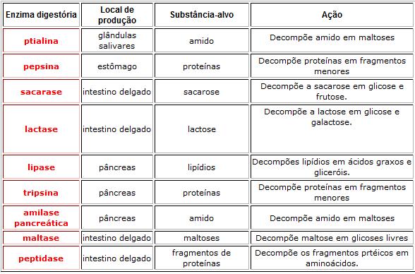 tabela enzimas